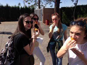 naranjas-valencianas