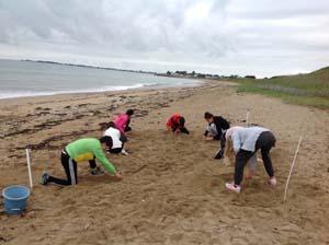 Exploration des dunes